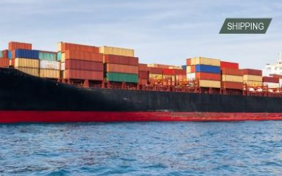 END OF APRIL AND MAY OPENINGS ON CONTAINER & BULK VESSELS