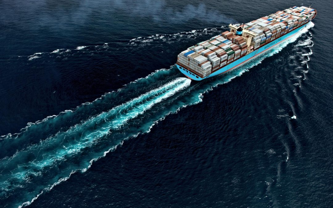 DECK AND ELECTRICAL CADETS FOR CONTAINER VESSELS